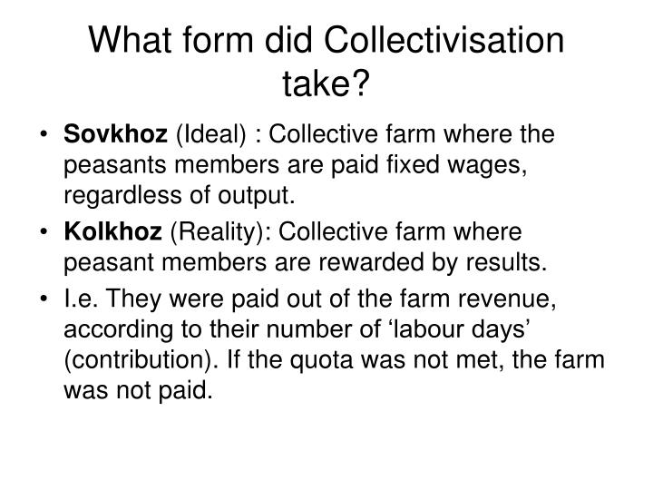 What form did Collectivisation take?