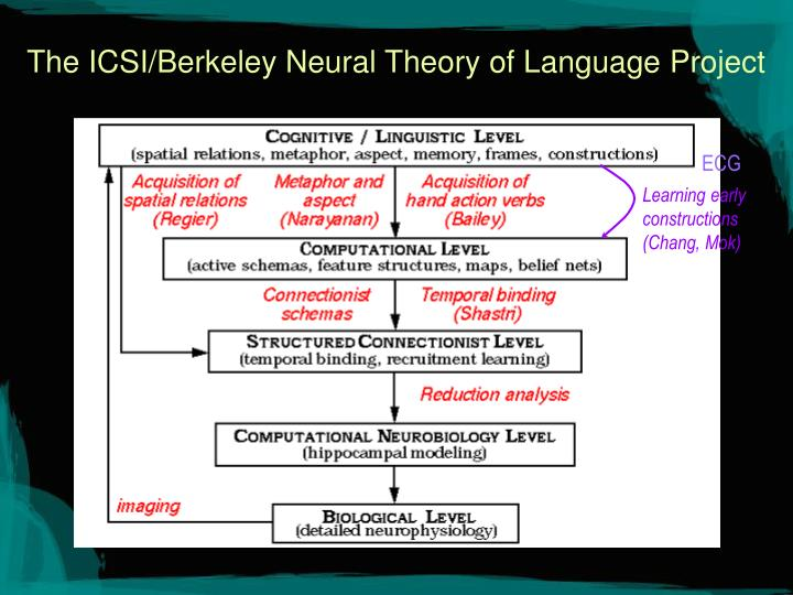 the icsi berkeley neural theory of language project n.