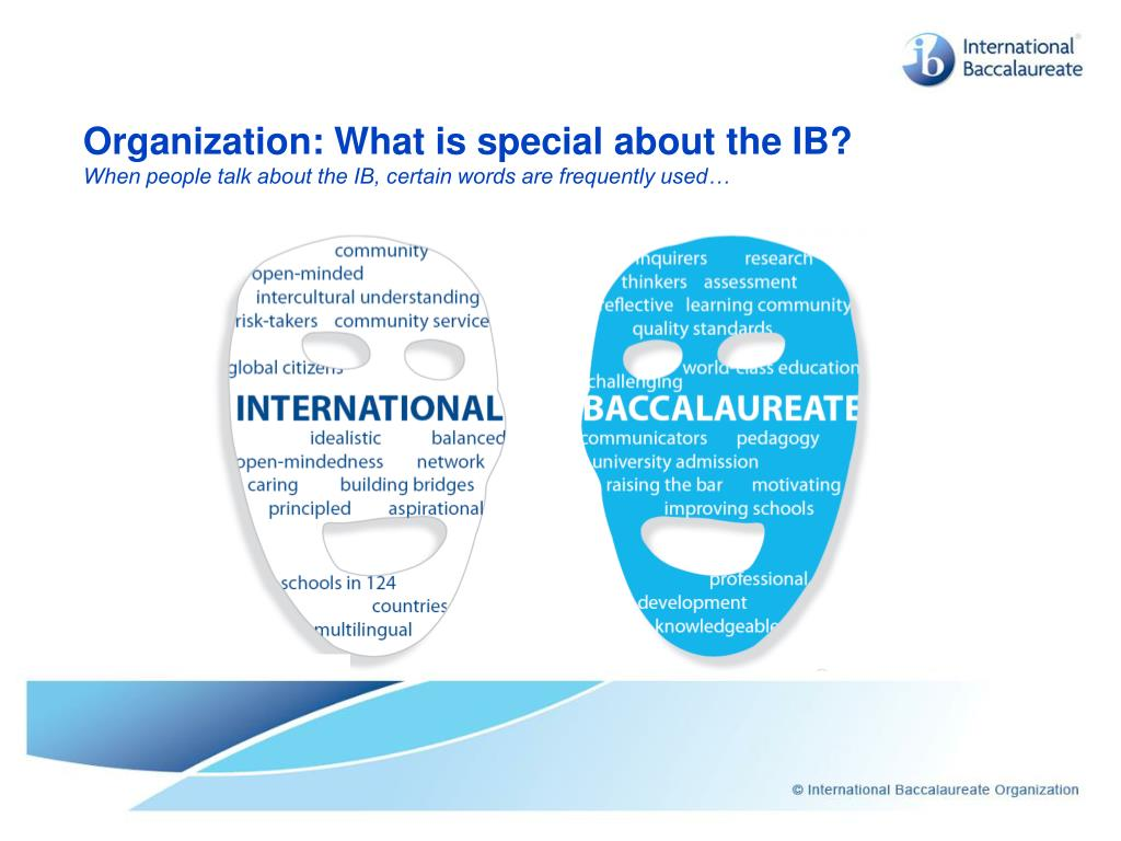 Organization: What is special about the IB?