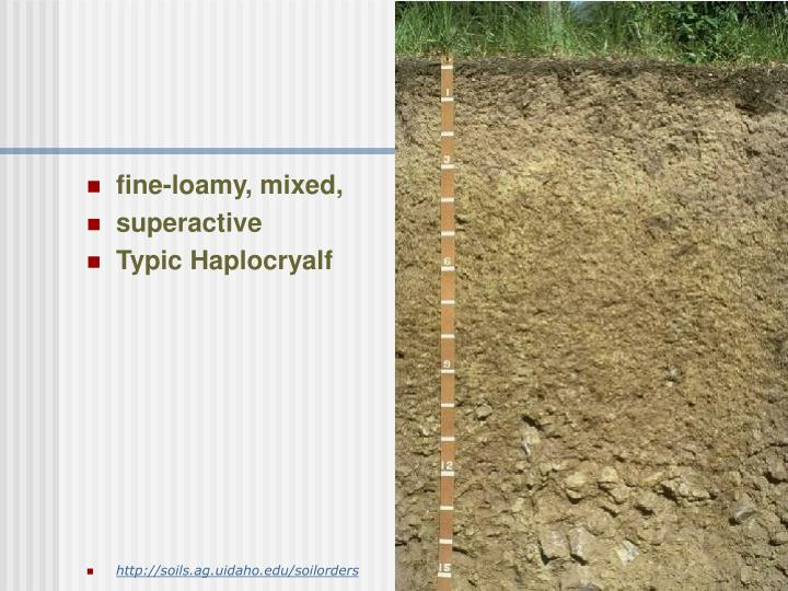 fine-loamy, mixed,