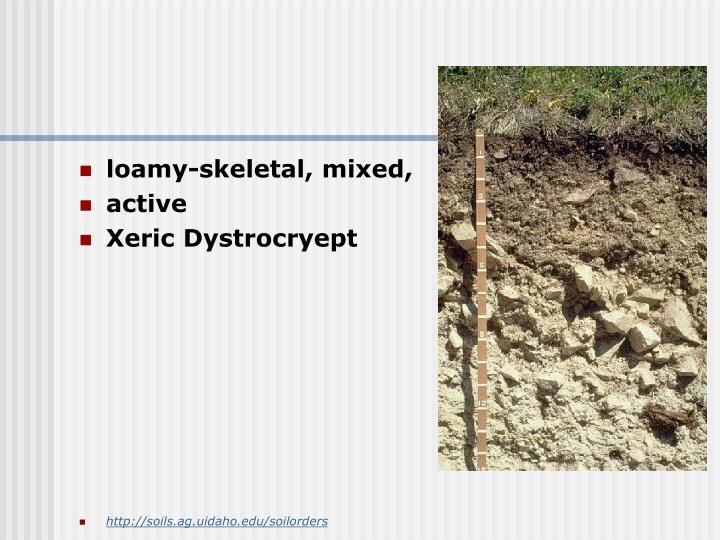 loamy-skeletal, mixed,