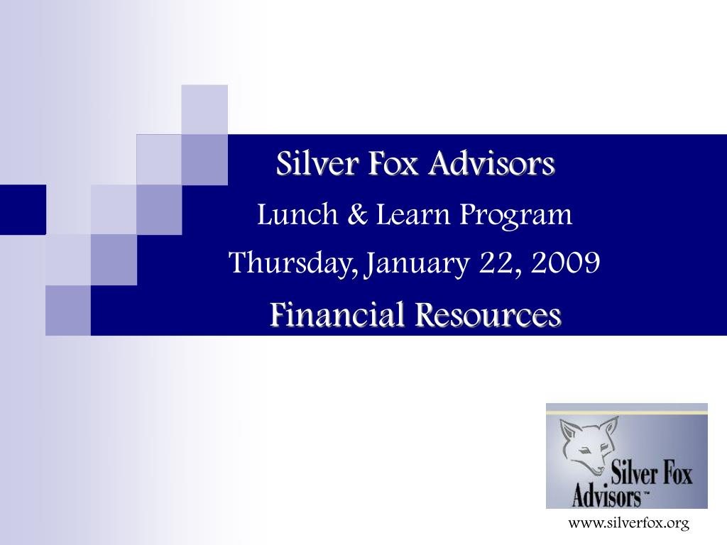 silver fox advisors lunch learn program thursday january 22 2009 financial resources