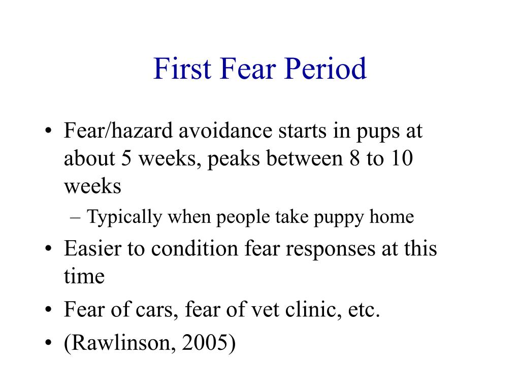 First Fear Period