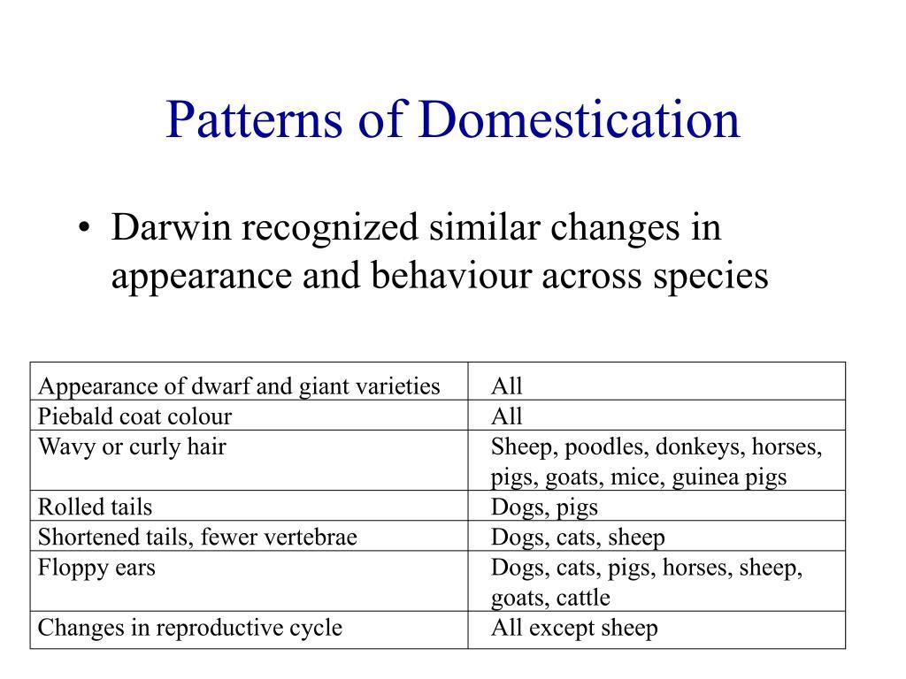 Patterns of Domestication