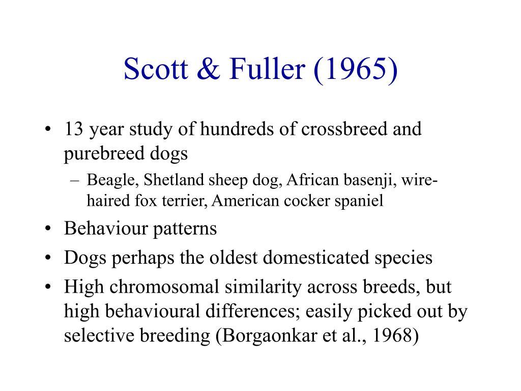 Scott & Fuller (1965)