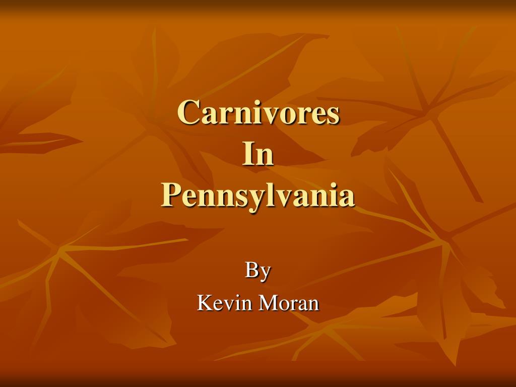 carnivores in pennsylvania l.