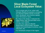 silver maple forest local ecosystem value