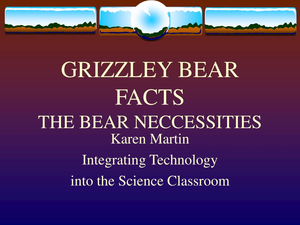 grizzley bear facts the bear neccessities l.
