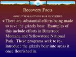 recovery facts grizzley bear facts the bear neccessities