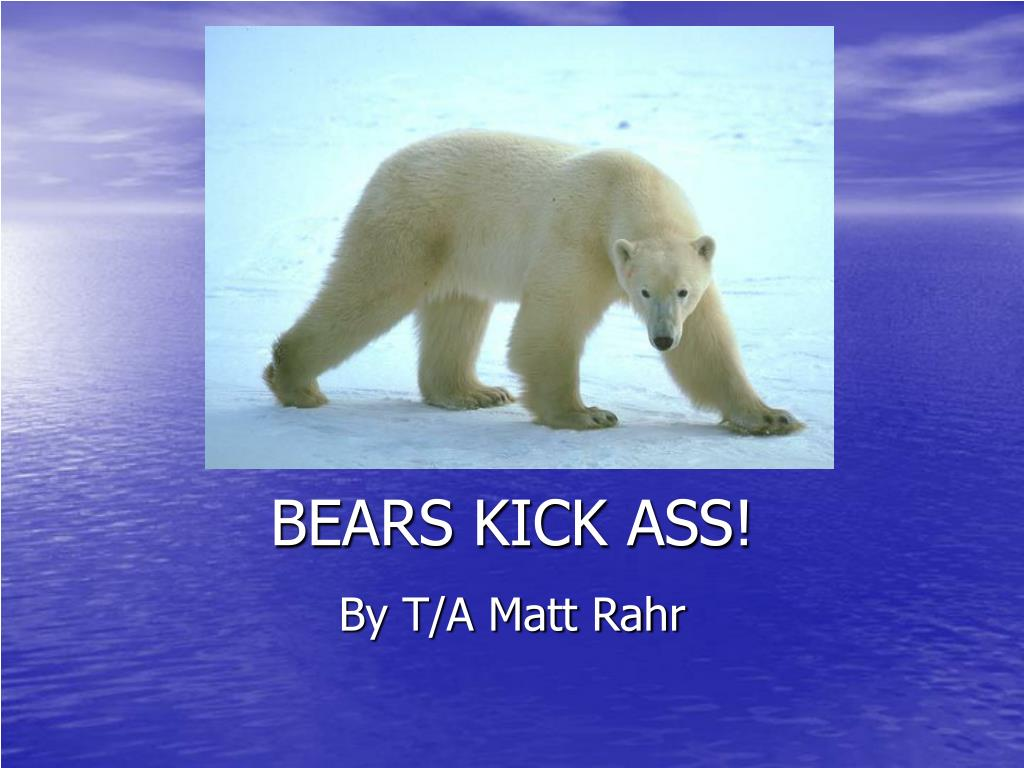 bears kick ass