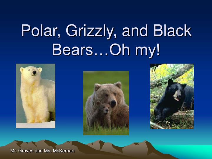 Polar grizzly and black bears oh my