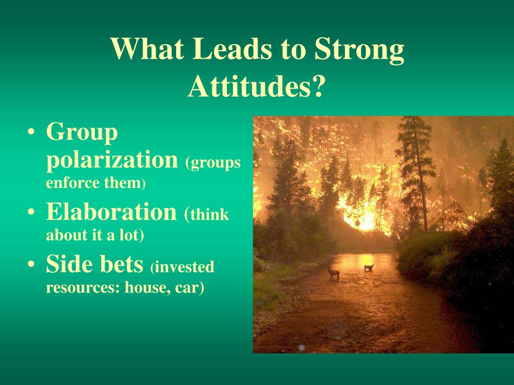 What Leads to Strong Attitudes?