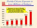 florida citizens exposure to loss billions of dollars