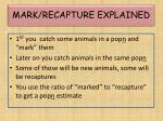 mark recapture explained