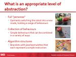 what is an appropriate level of abstraction