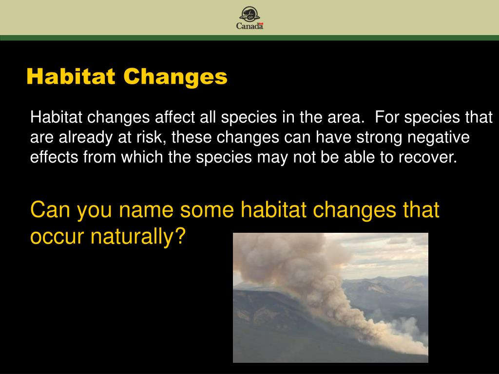 Habitat Changes