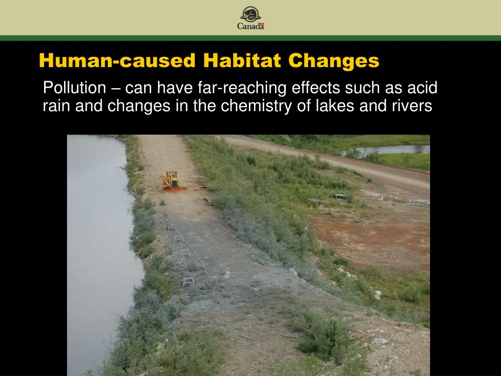 Human-caused Habitat Changes