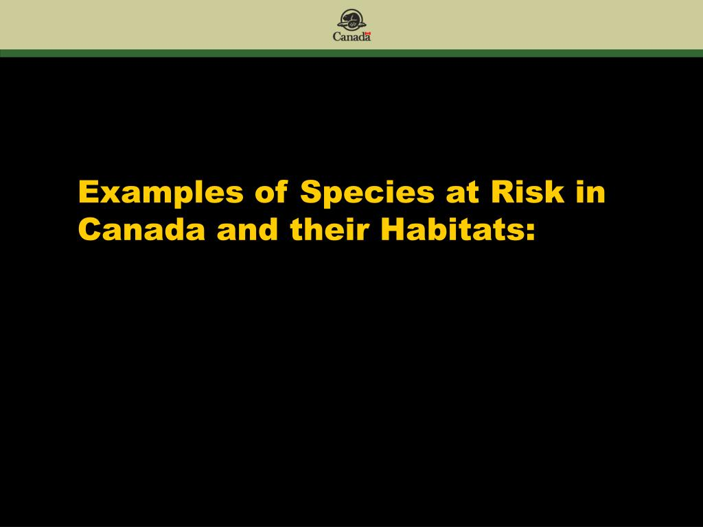 Examples of Species at Risk in Canada and their Habitats: