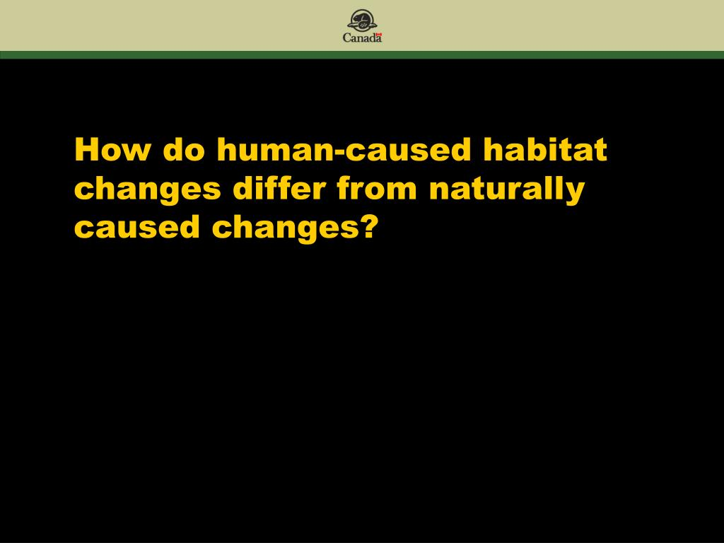 How do human-caused habitat changes differ from naturally caused changes?