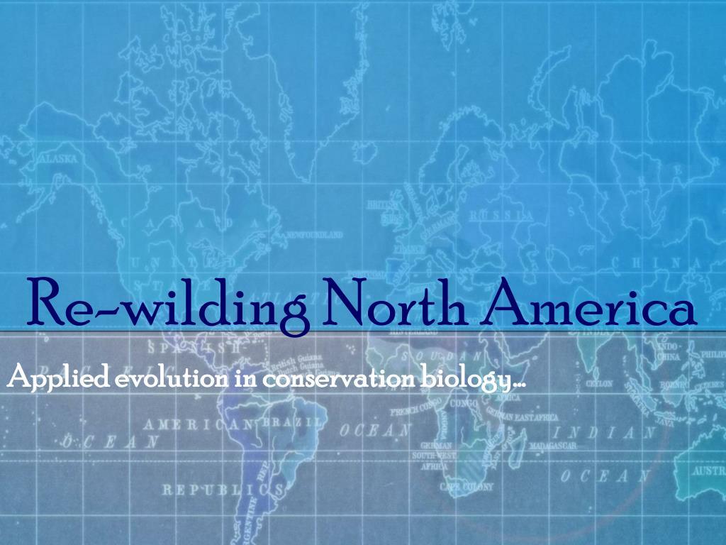 Re-wilding North America