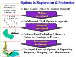 options in exploration production