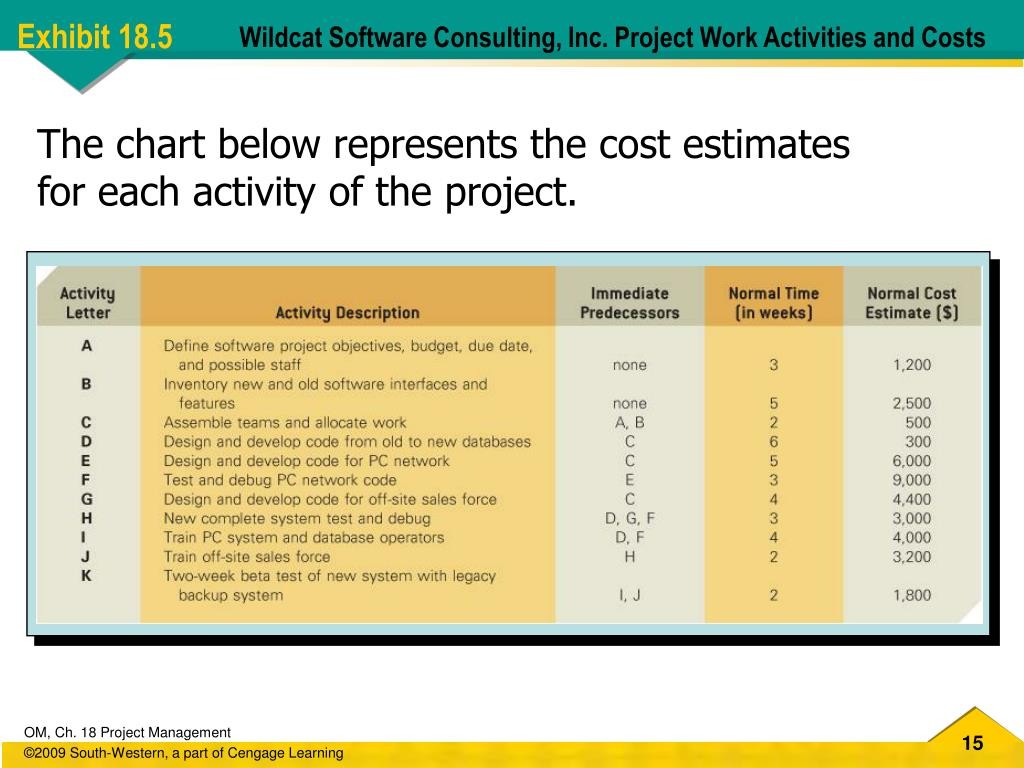 Wildcat Software Consulting, Inc. Project Work Activities and Costs