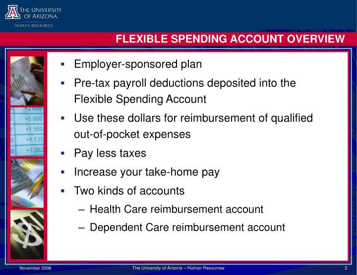 Flexible spending account overview