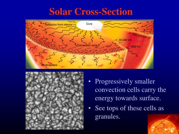 Solar Cross-Section