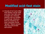 modified acid fast stain