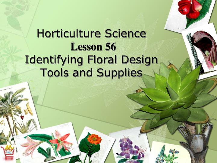 horticulture science lesson 56 identifying floral design tools and supplies n.