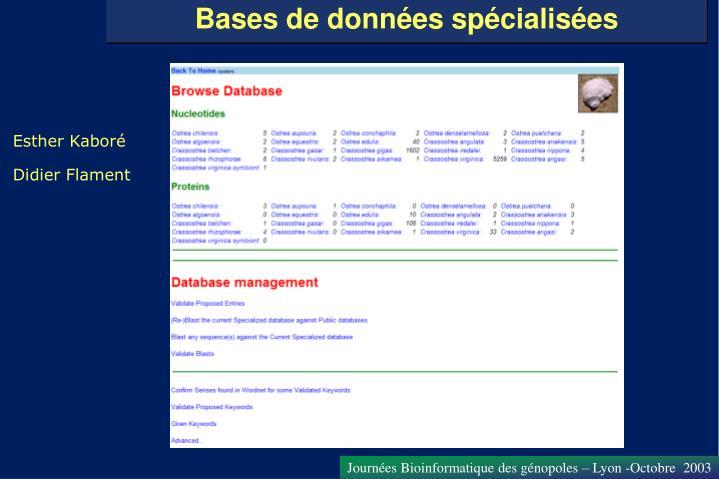 Bases de données spécialisées