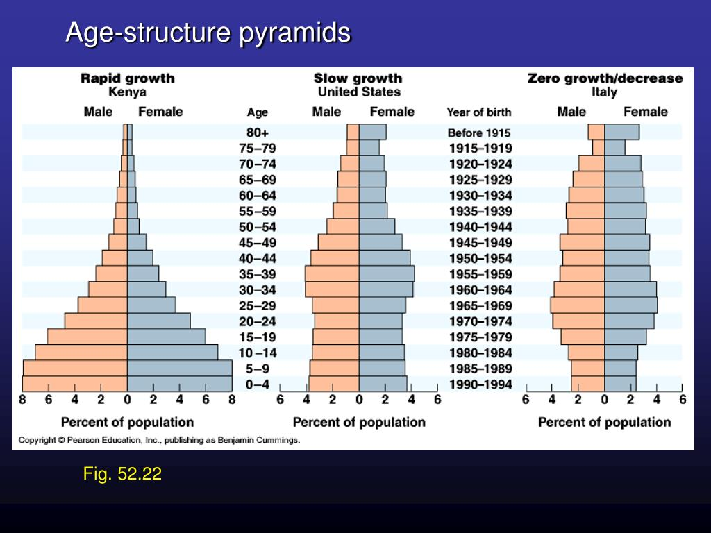 Age-structure pyramids