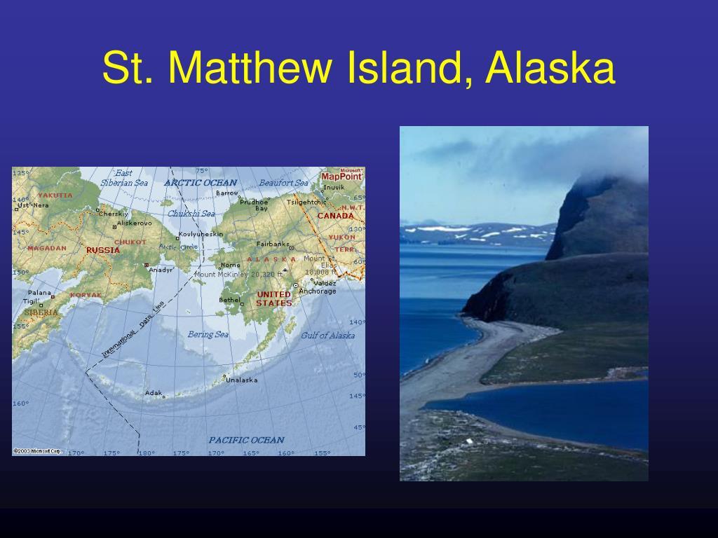 St. Matthew Island, Alaska