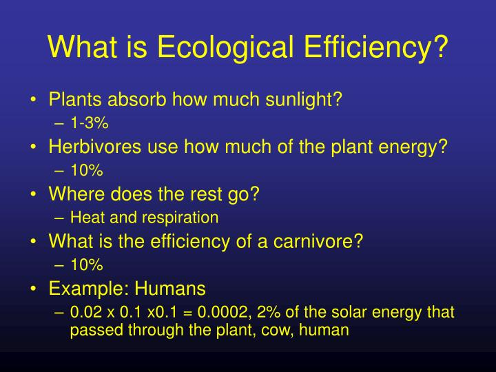 What is ecological efficiency