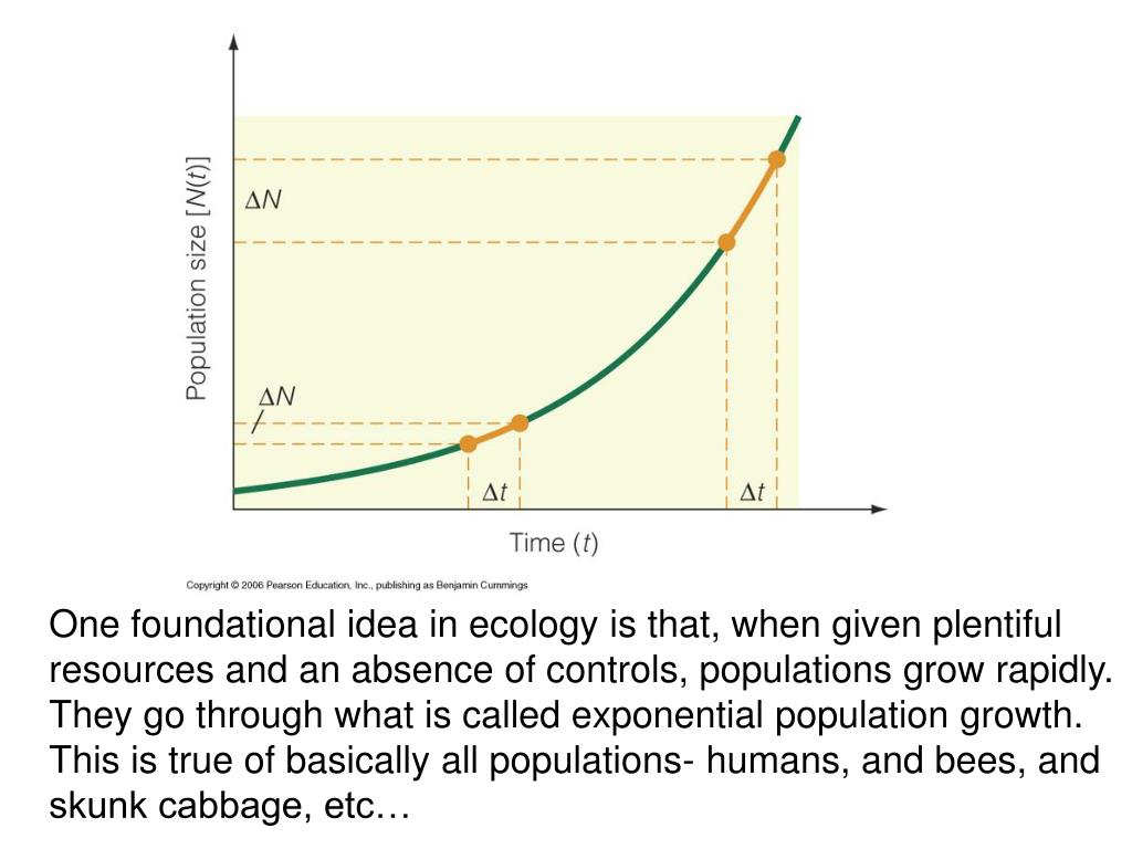 One foundational idea in ecology is that, when given plentiful resources and an absence of controls, populations grow rapidly.  They go through what is called exponential population growth.  This is true of basically all populations- humans, and bees, and skunk cabbage, etc…