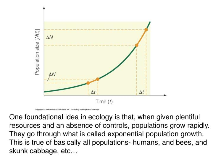 One foundational idea in ecology is that, when given plentiful resources and an absence of controls,...