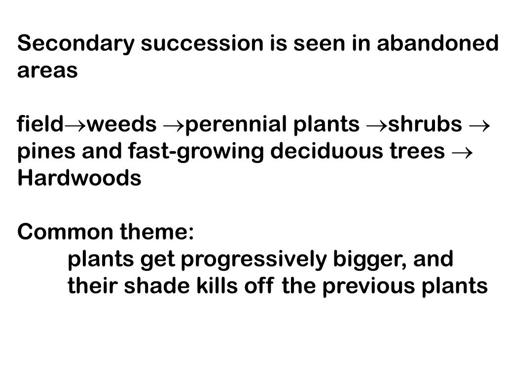 Secondary succession is seen in abandoned