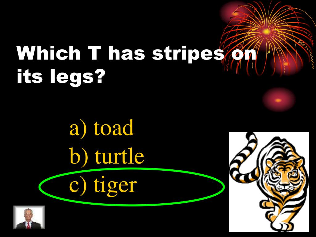 Which T has stripes on its legs?