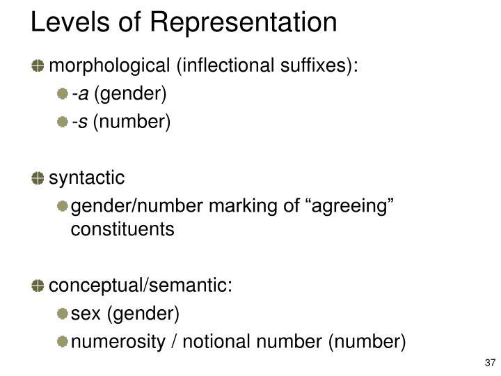 Levels of Representation
