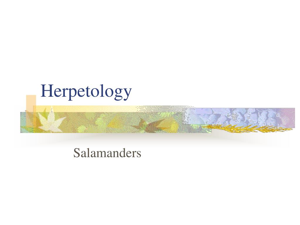 herpetology l.