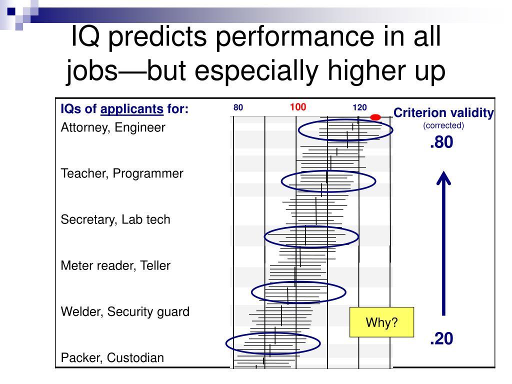 120 Iq Jobs