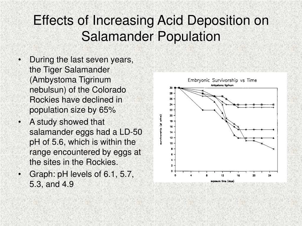 Effects of Increasing Acid Deposition on Salamander Population