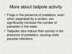 more about tadpole activity