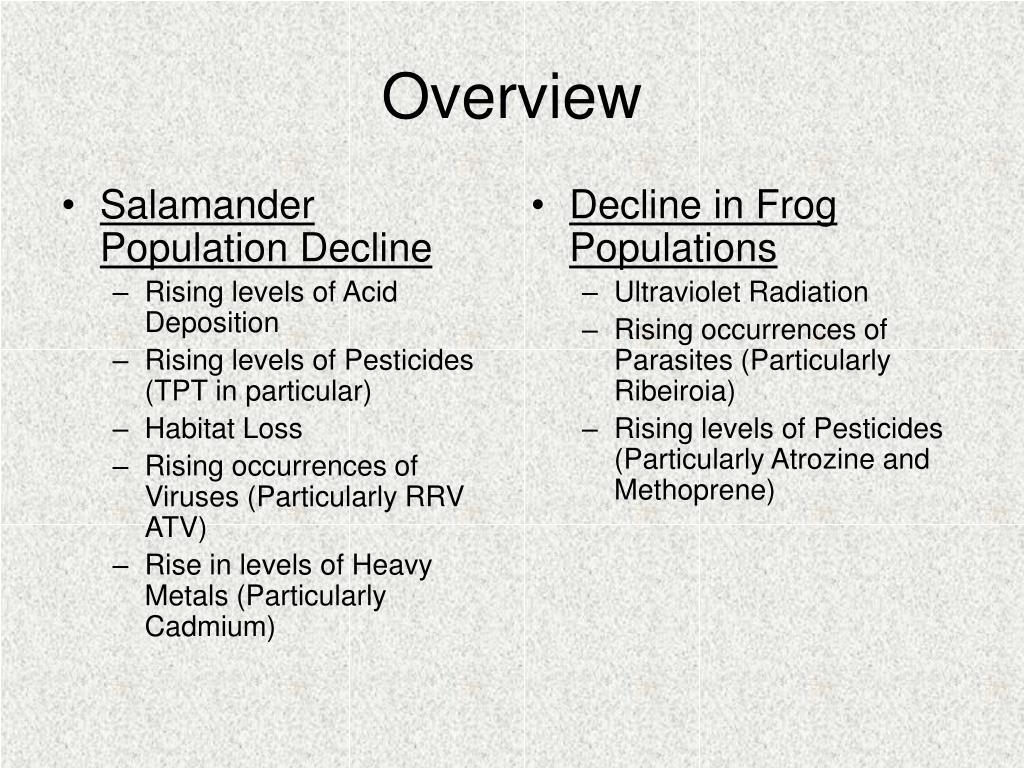Salamander Population Decline