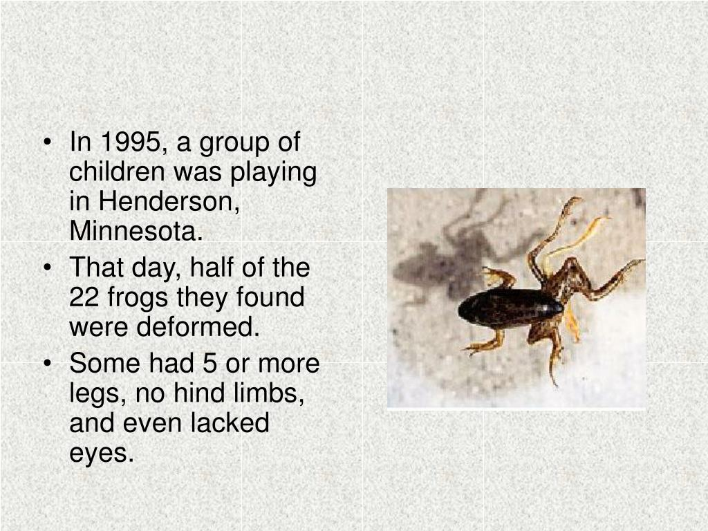 In 1995, a group of children was playing in Henderson, Minnesota.