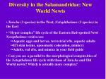 diversity in the salamandridae new world newts