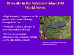 diversity in the salamandridae old world newts