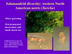 salamandrid diversity western north american newts taricha11