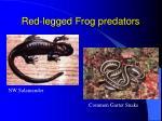 red legged frog predators