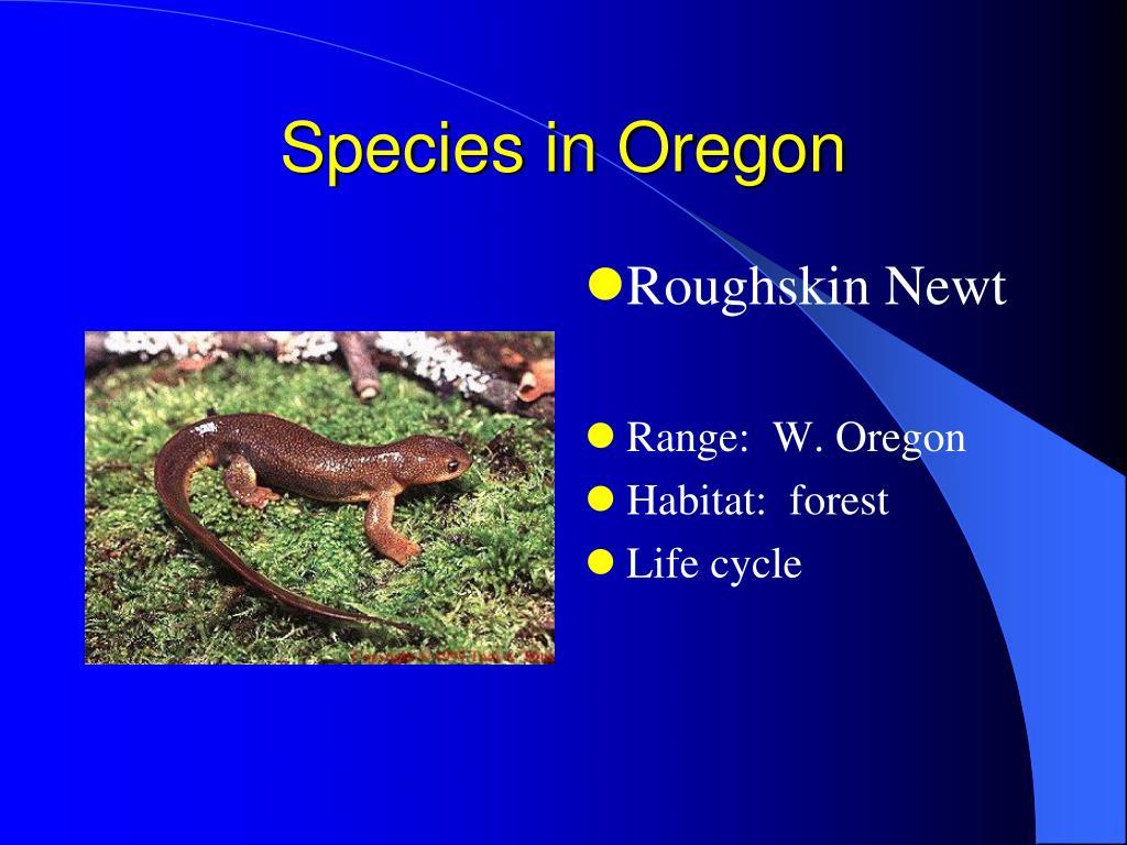 Species in Oregon